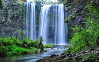 Whangarei Falls Holiday Park Backpackers